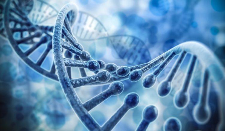 meditação provoca mudanças genéticas