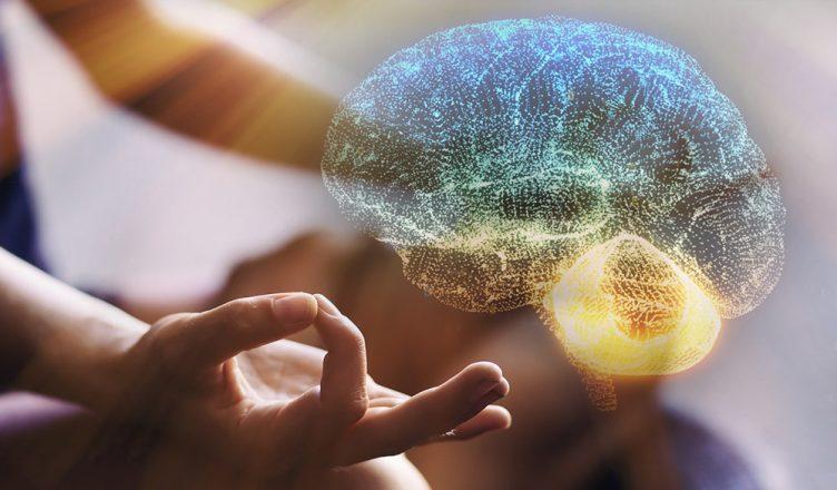 mindfulness muda o cérebro